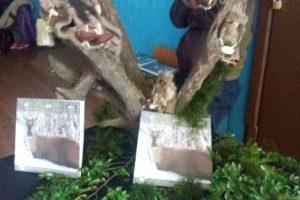 Foto:Irene Ayuso, enviada especial. Imagen Por: