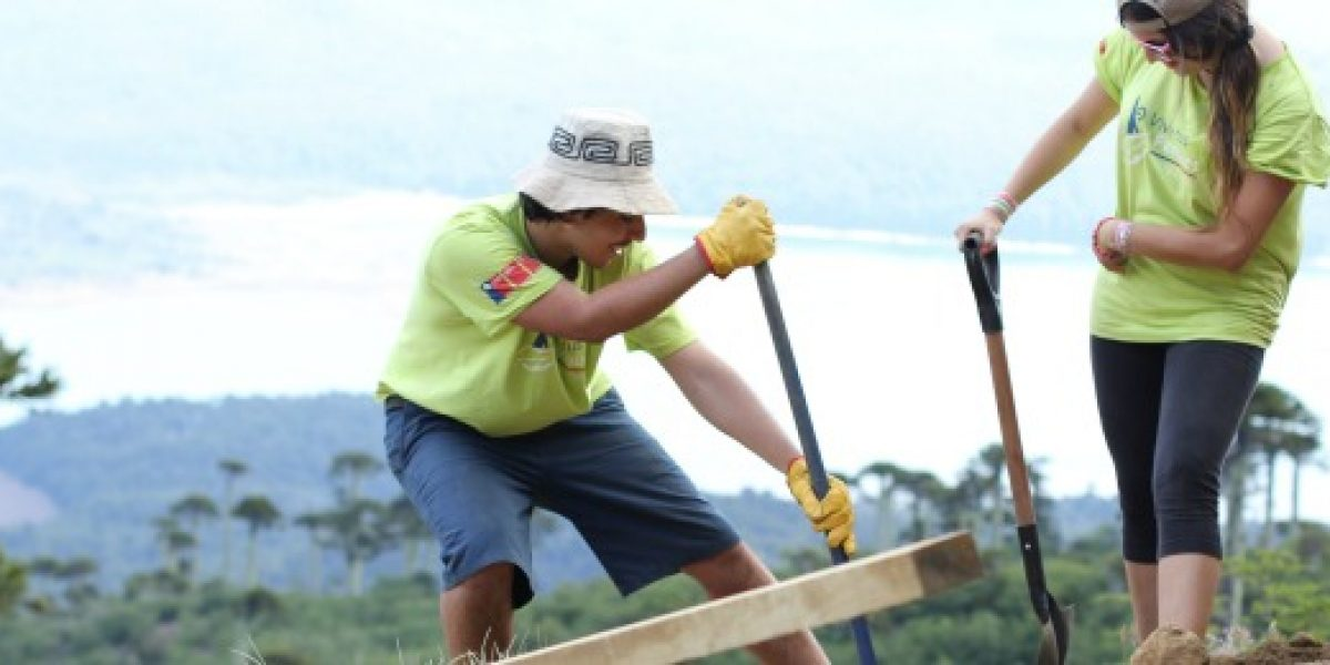 Conaf e Injuv abren postulaciones para trabajos de verano