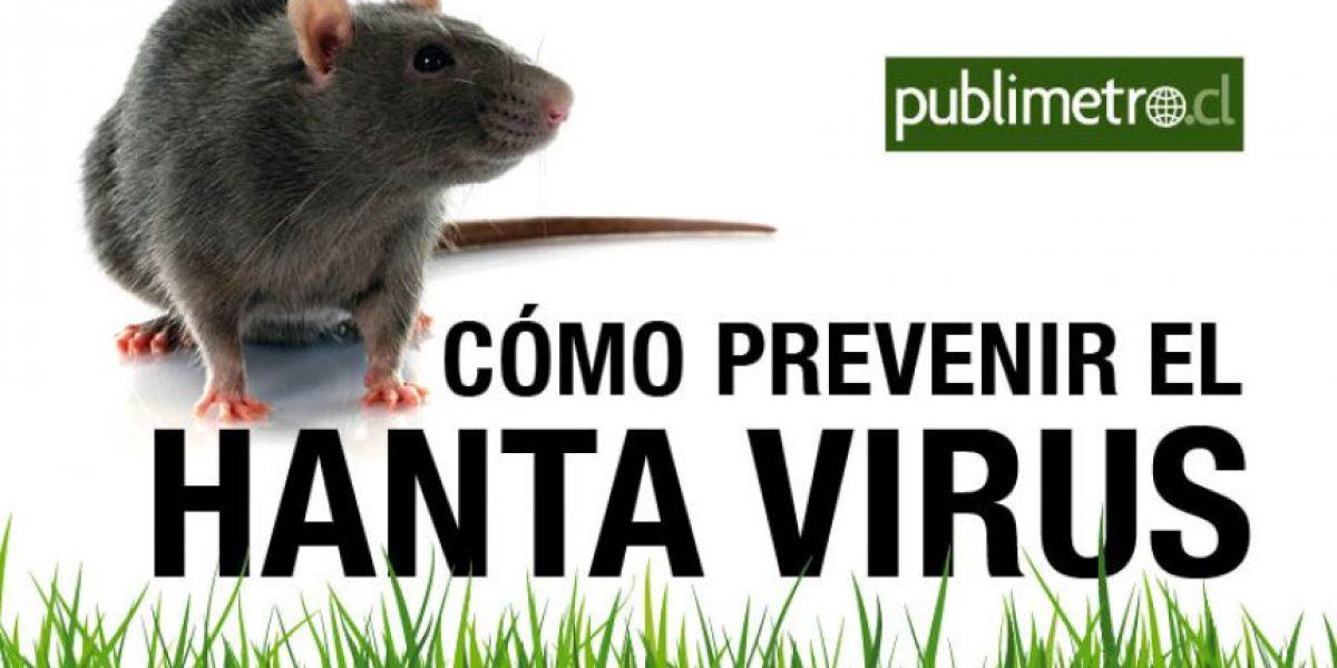 Infografía: cómo prevenir el Hanta Virus