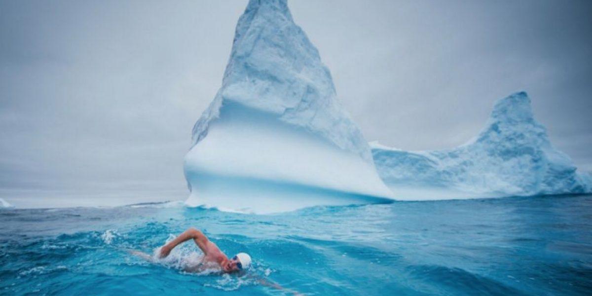 """""""Protector de los océanos"""" nadará en la Antártica para resguardar ecosistema marino"""