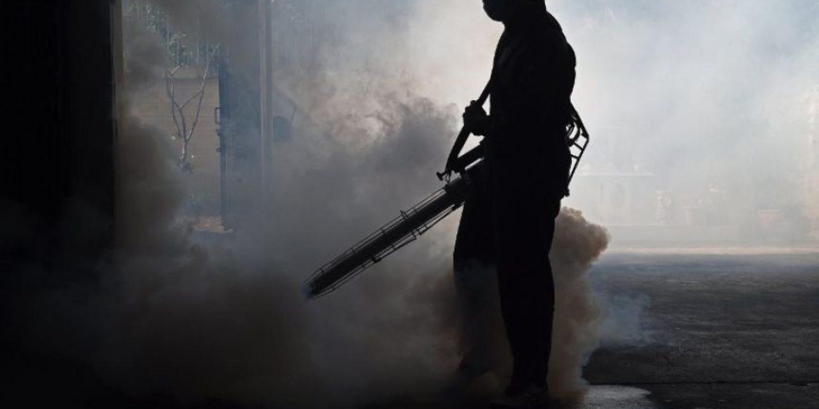 Virus Zika. Foto:AFP. Imagen Por: