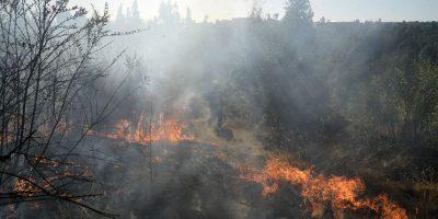 Los incendios generan un alto impacto en los índices de GEI. Foto:Agencia Uno. Imagen Por: