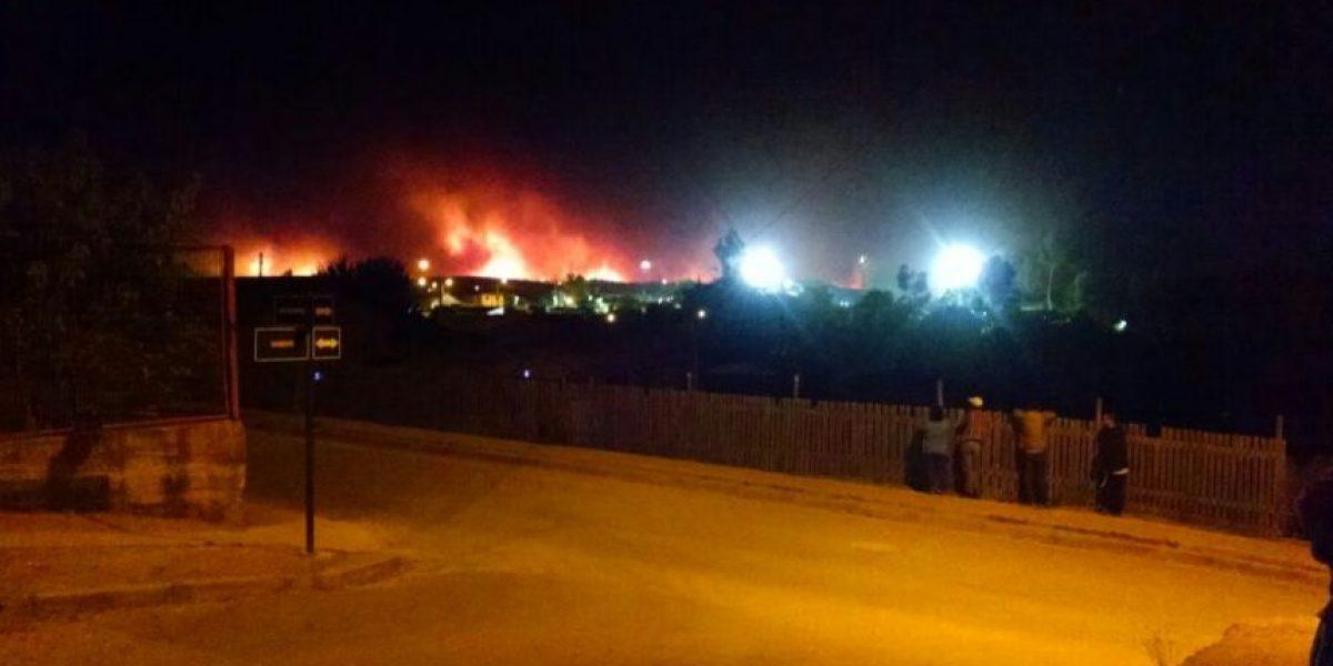 Alerta Roja por incendio forestal en comuna de Paredones: 12 viviendas destruidas