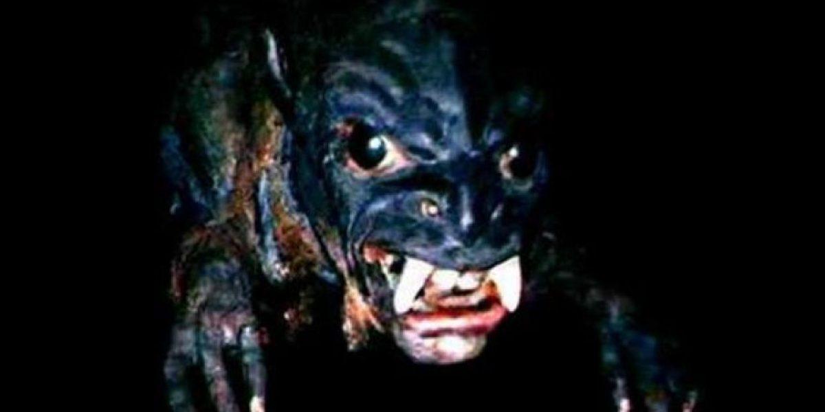 Investigación desvela los secretos de uno de los mayores misterios de la humanidad: el chupacabras