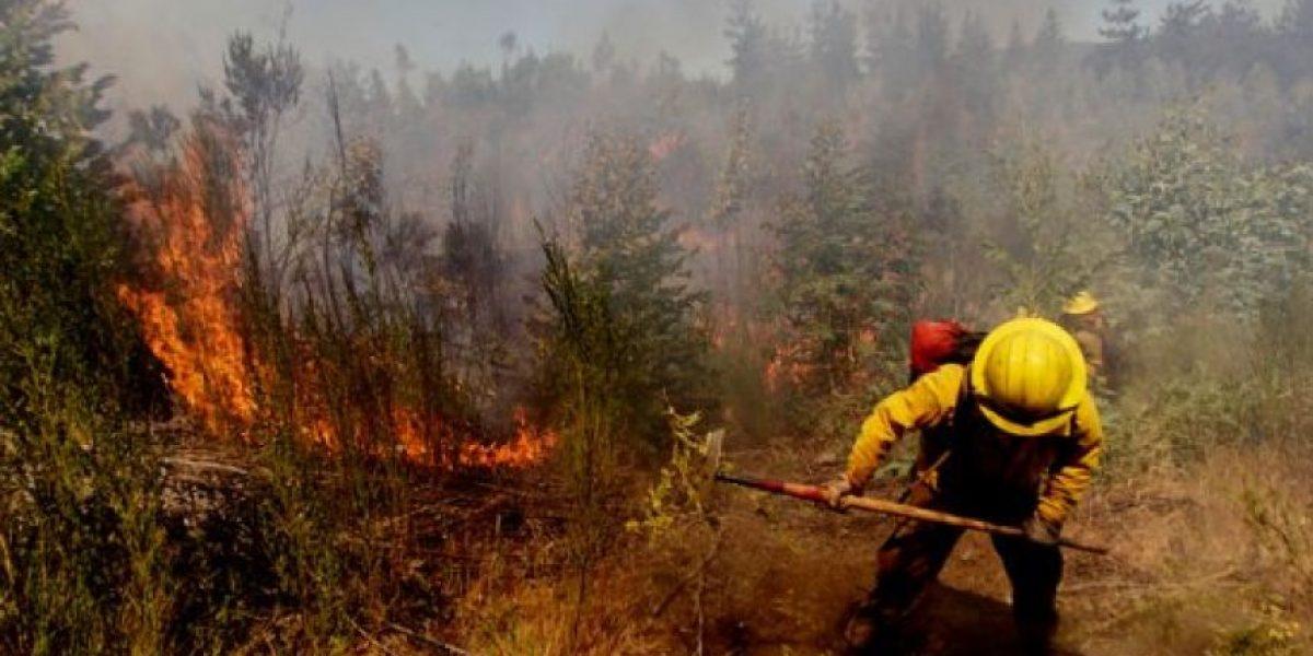 Intendencia de Valparaíso decreta alerta roja para Quintero y San Antonio por incendio forestal