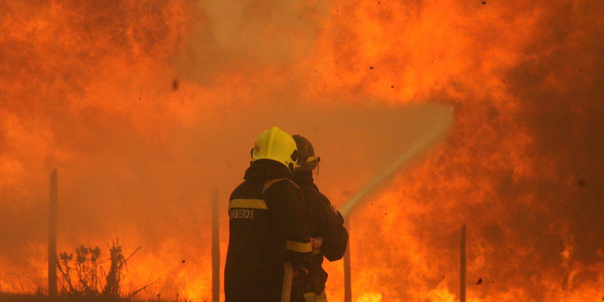 Resultado de imagen para incendios forestales en chile