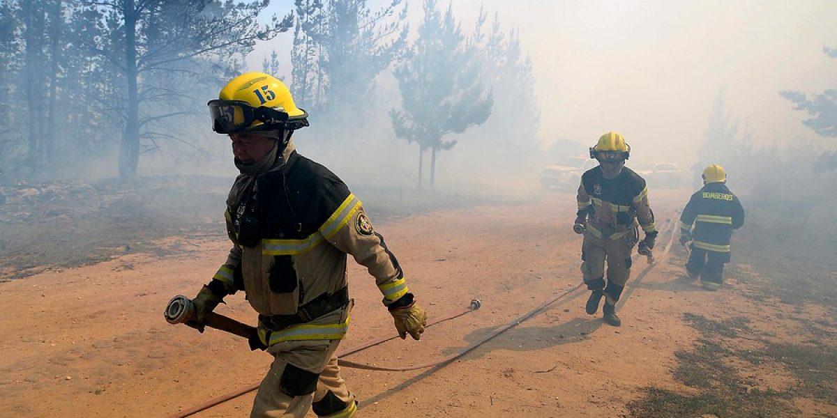 Resultado de imagen para Bomberos combaten incendios forestales en chile