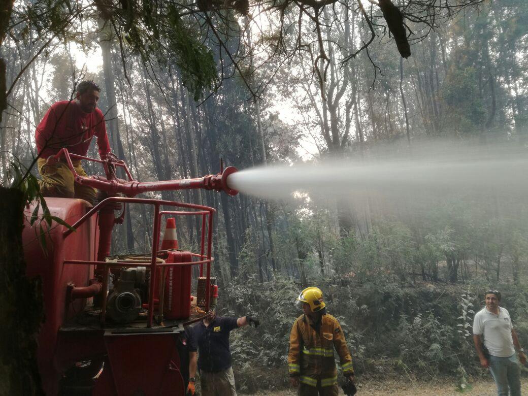 Brigadistas colombianos trabajan en Chile para apagar lso incendios.