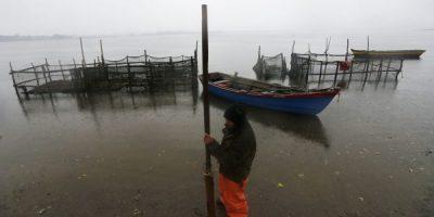 Sernapesca decretó emergencia a raíz de la presencia de microalgas en el sur