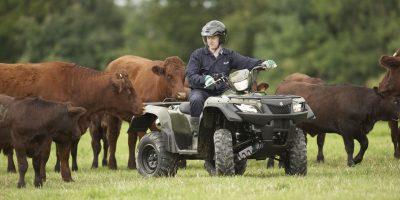 Suzuki aborda el mercado de los quads lanzando su LT-A400