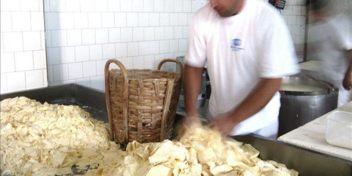 El kackavalj de Pirot, un queso serbio que llegó a la Casa Blanca