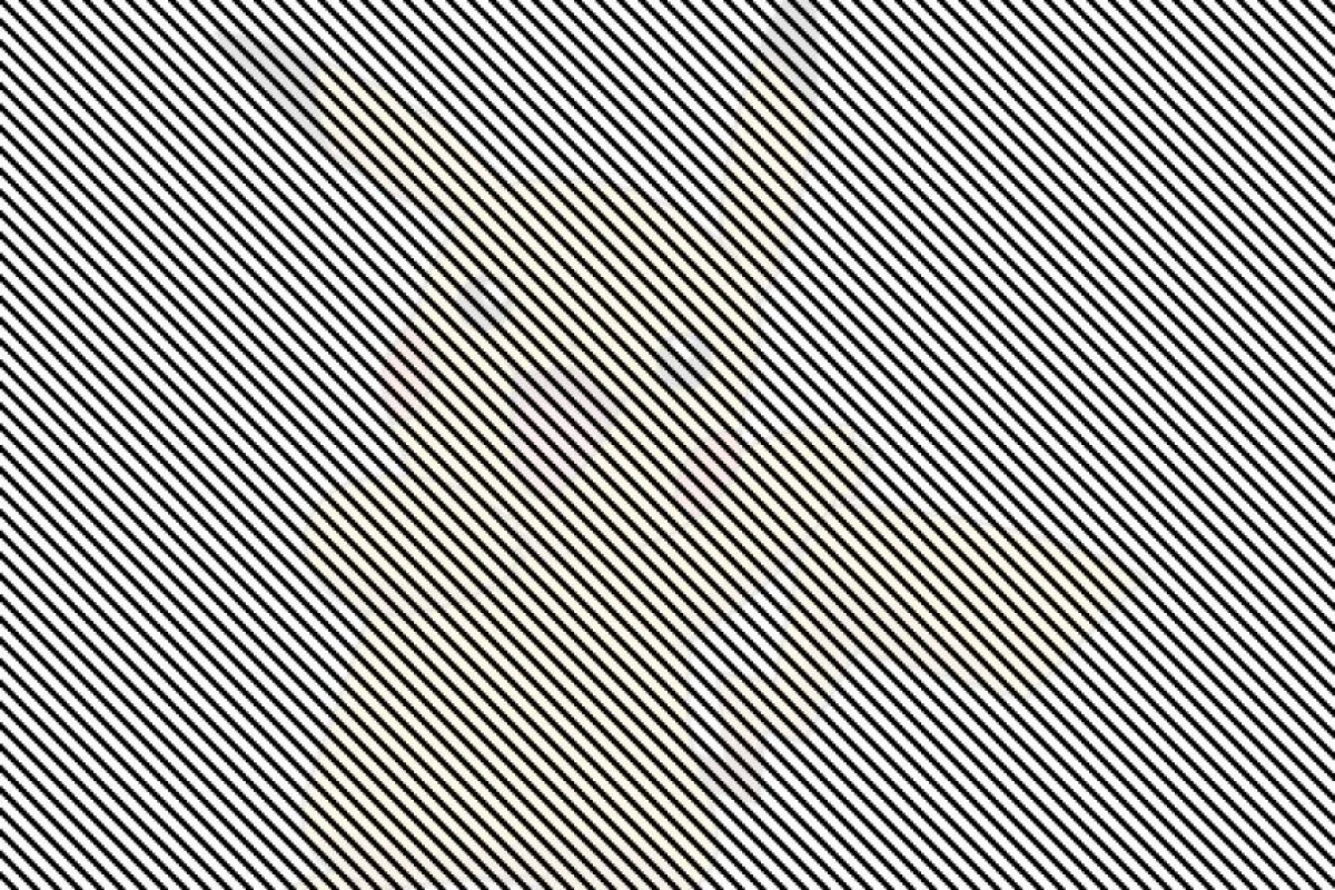 Mueva la cabeza de derecha a izquierda mientras observa fijamente la imagen. Foto:9gag.com