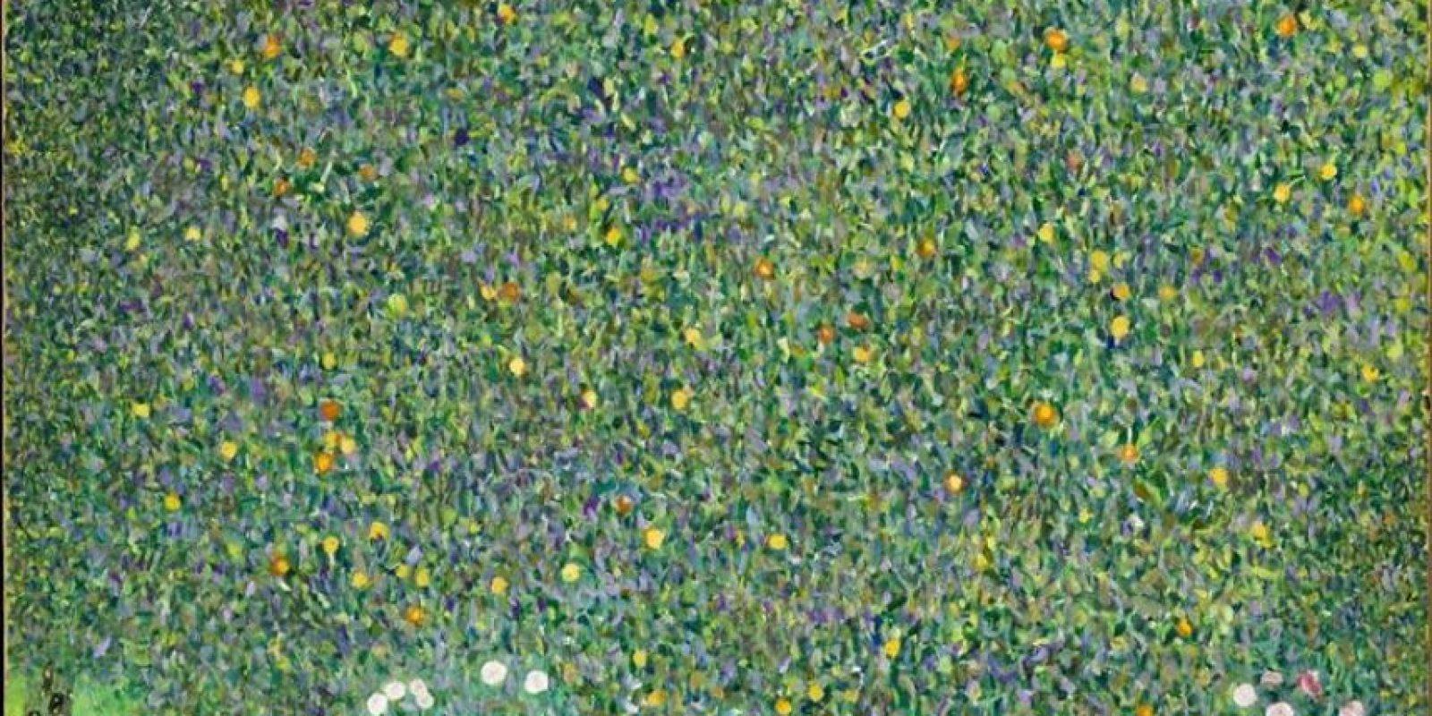 """Imagen cedida del cuadro de Gustav Klimt, """"Rosales bajo los árboles"""" (1905), incluido en la exposición """"Debussy, la Música y las Artes"""" sobre las obras de los pintores que inspiraron a Claude Debussy y que acogen los museos parisinos d' Orsay y de l' Orangerie, en homenaje al compositor francés en el 150 aniversario de su nacimiento. EFE/ Patrice Schmidt/Museo d' Orsay"""