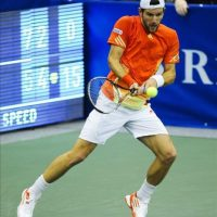 El tenista austríaco Jurgen Melzer devuelve una bola al canadiense Milos Raonic, durante el partido por la final del Campeonato Regions Morgan Keegan en Memphis, Tennessee (EE.UU.). EFE