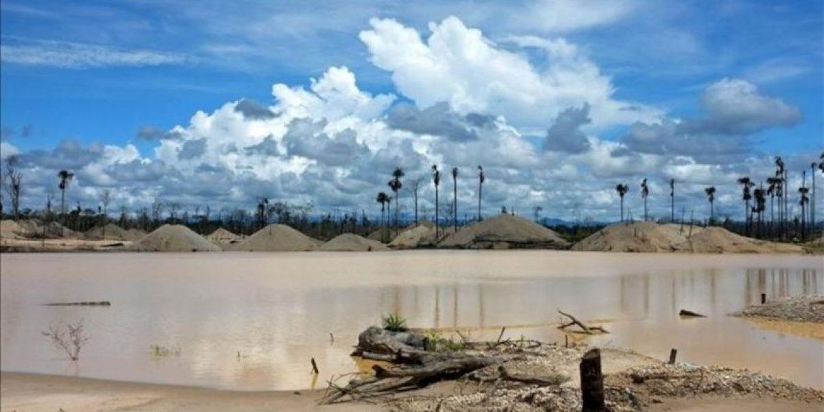 La corrupción y la minería ilegal devastan un corredor de la amazonía peruana