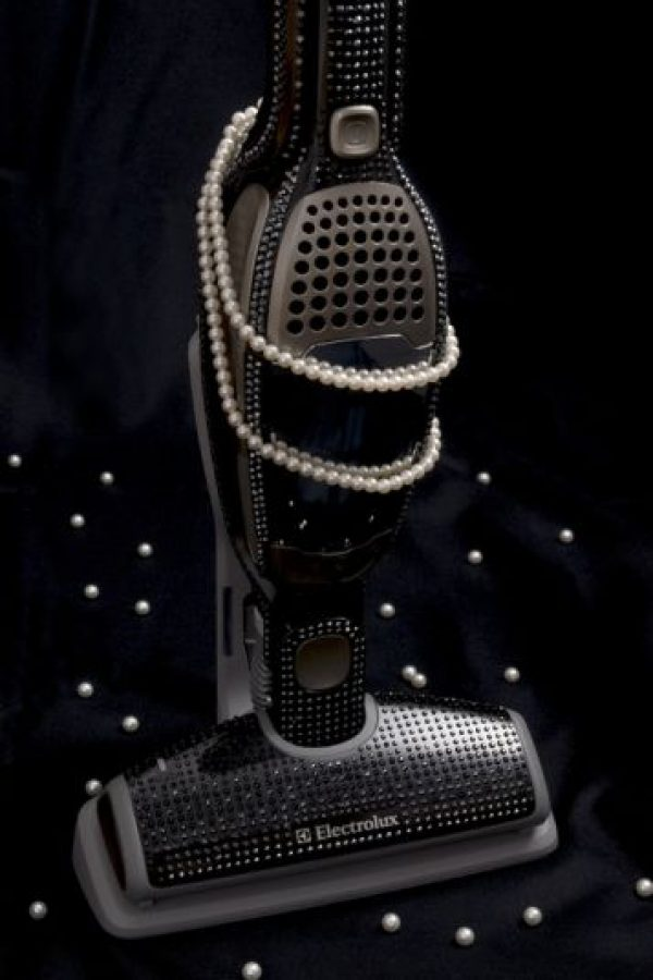 Aspiradora con diamantes. $19,200 dólares Foto:pulse2.com
