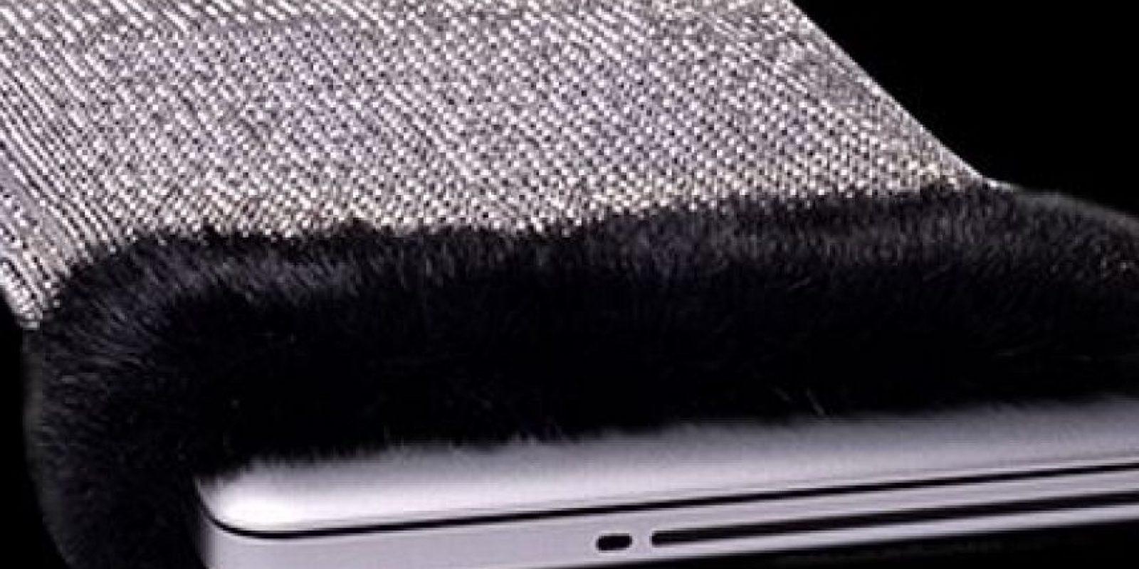 Forro para laptop. 11 millones de dólares Foto:bornrich.com