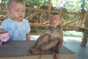 A esta niña que claramente desconfía de los monos Foto:Buzzfeed.com