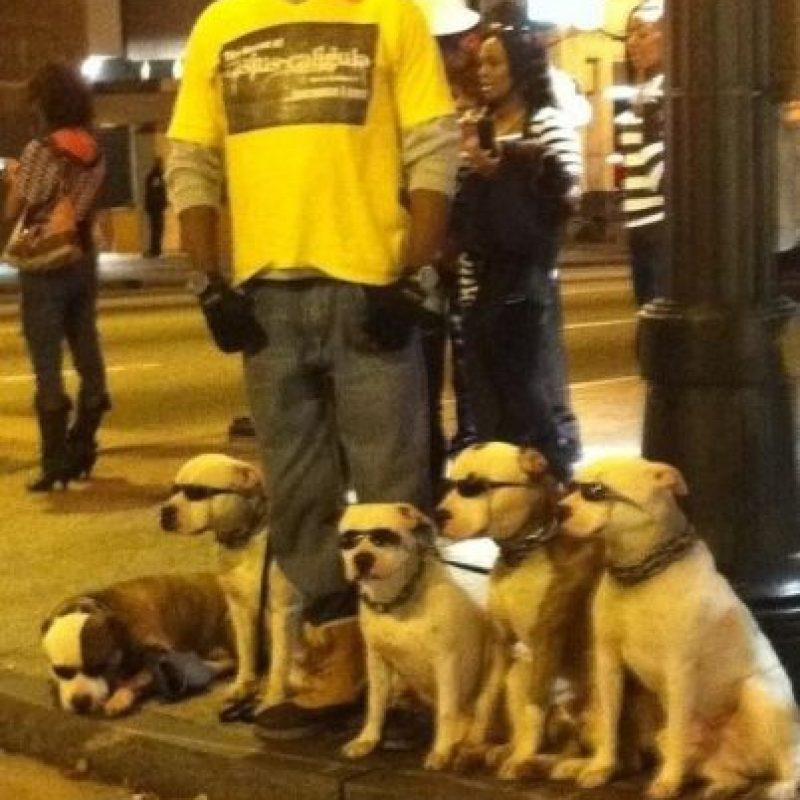 A este paseador de perros Foto:Buzzfeed.com