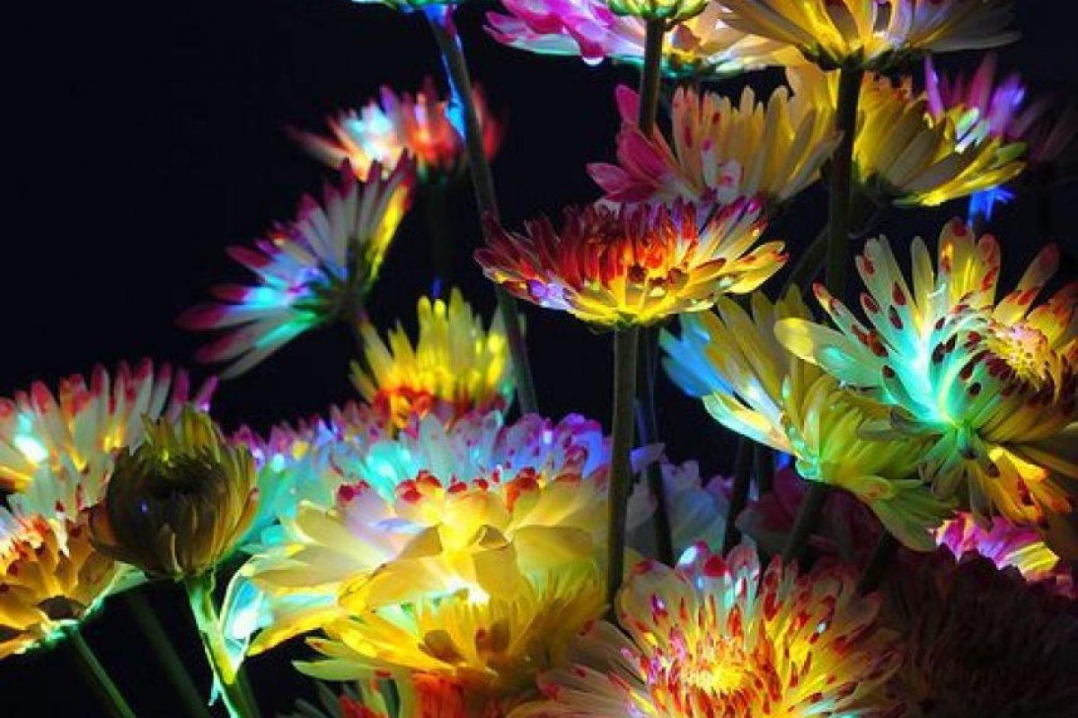 Foto:Theberry.com