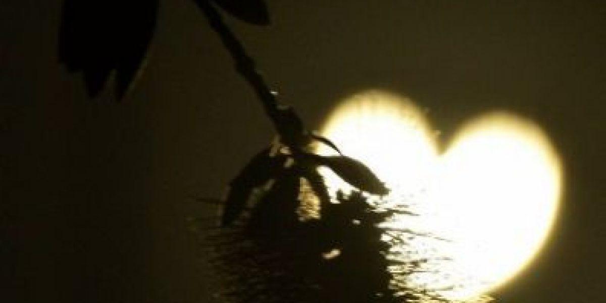 [Galería] El eclipse de sol en imágenes