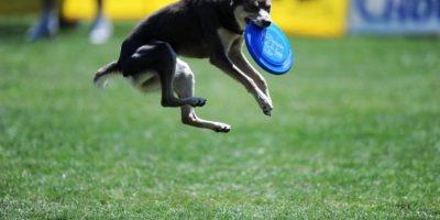 Foto:buzzfeed.com