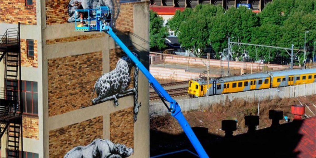 Roa:el artista callejero desconocido