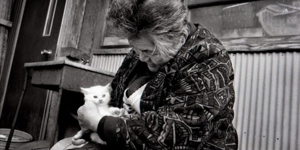La increíble amistad de una anciana y su gato