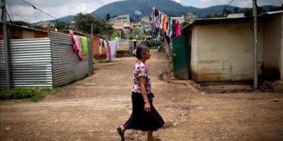 """Estas cifras proceden del """"Panorama de la Seguridad Alimentaria y Nutricional en América Latina y el Caribe 2012"""", presentado hoy en Santiago de Chile por la Organización de las Naciones Unidas para la Agricultura y la Alimentación (FAO). EFE/Archivo"""