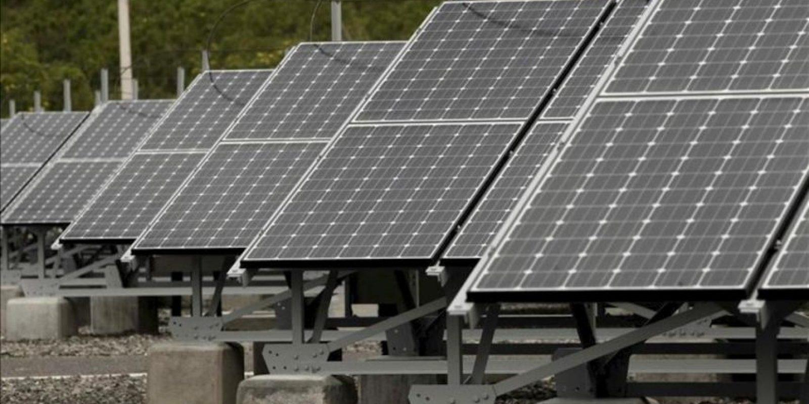 Vista del pasado jueves 22 de noviembre de parte de la estructura del Parque Solar Miravalles, la primera gran planta de Costa Rica para generar electricidad a partir de la luz del sol y la más grande de Centroamérica, con una capacidad de 1,2 gigavatios hora (GWh) al año. EFE