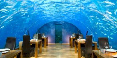El restaurante submarino Ithaa, en las Maldivas, ofrece una excelente vista marina mientras se come. Foto:Dailypix