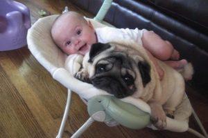 Foto:cutearoo.com