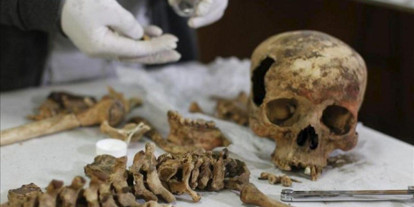 Un arqueólogo muestra los restos óseos de quien sería una sacerdotisa hallados en un mausoleo preinca de 1.200 años de antigüedad, en la zona denominada Castillo de Huarmey, región norteña de Áncash. EFE