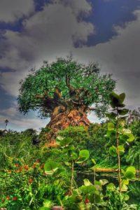 Este árbol no existe Foto:Buzzfeed.com
