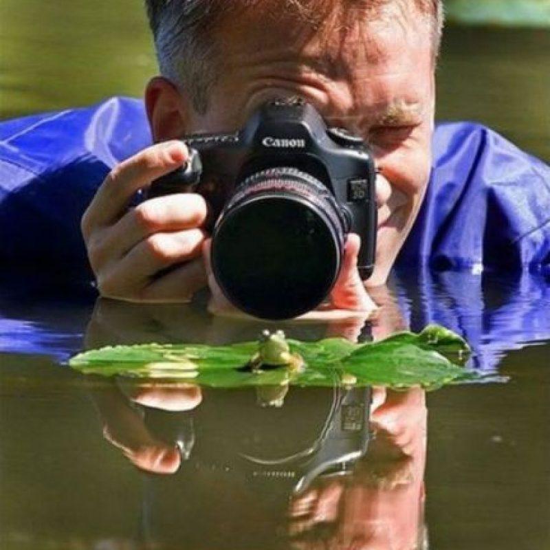 Foto:acidcow.com