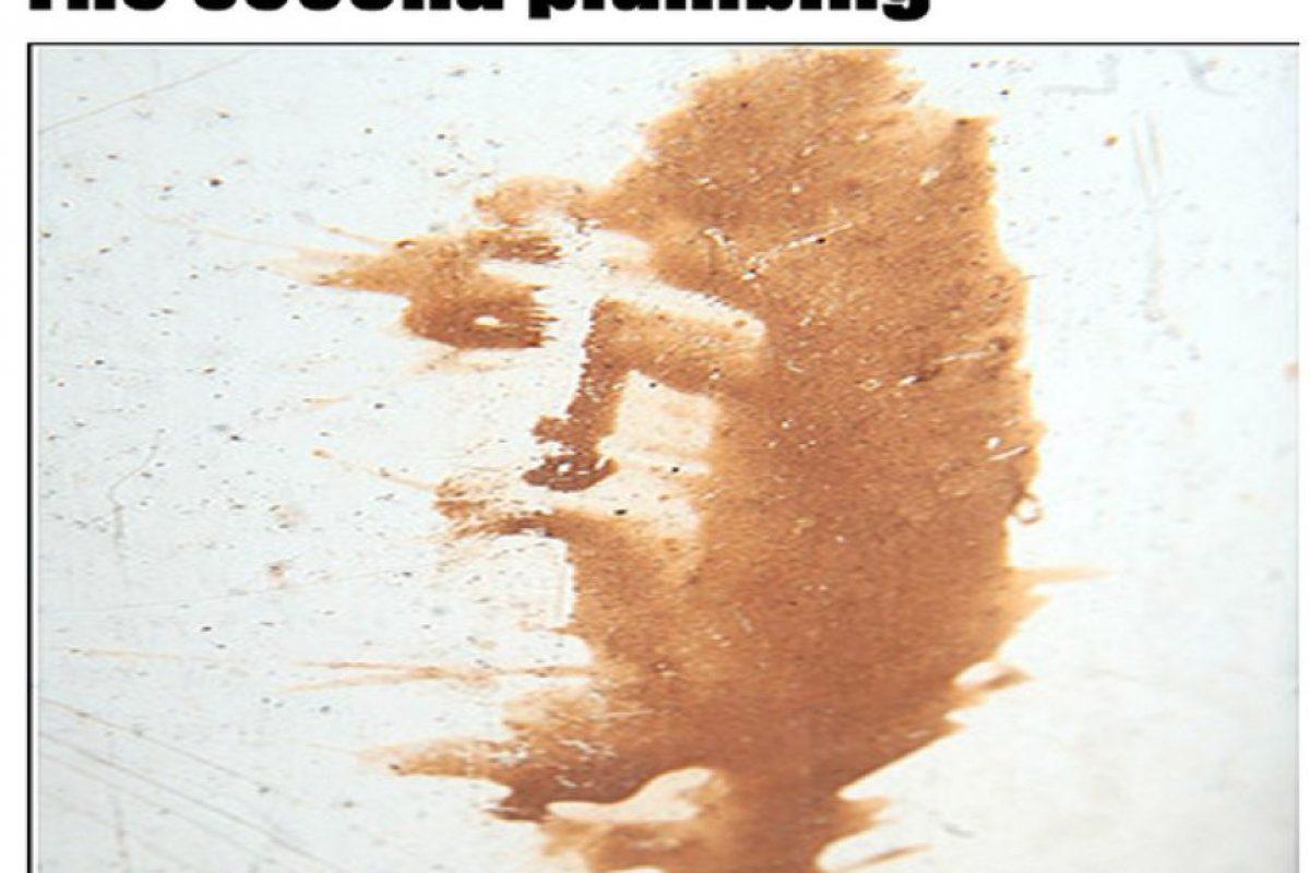 En un tubo de desagüe Foto:BuzzFeed.com