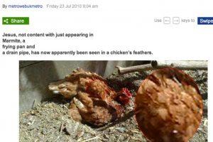 En las plumas de una gallina Foto:BuzzFeed.com