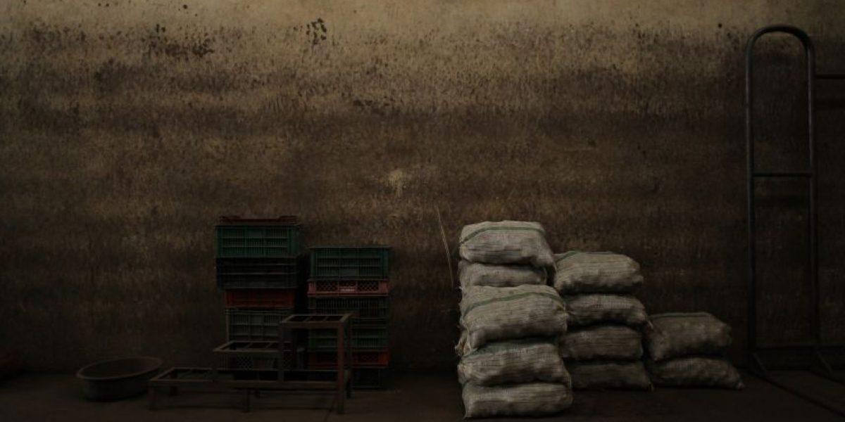 Fotos: En Corabastos 'asustan', tras paro nacional