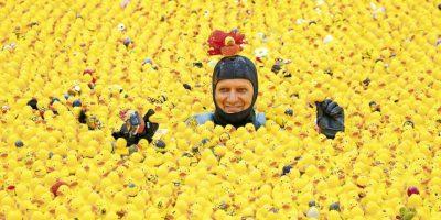 La sonrisa que trae el absurdo de una invasión de patos de hule. Foto:AFP