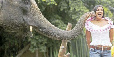 En un zoológico en bali También hay sonrisas nerviosas. Foto:AFP