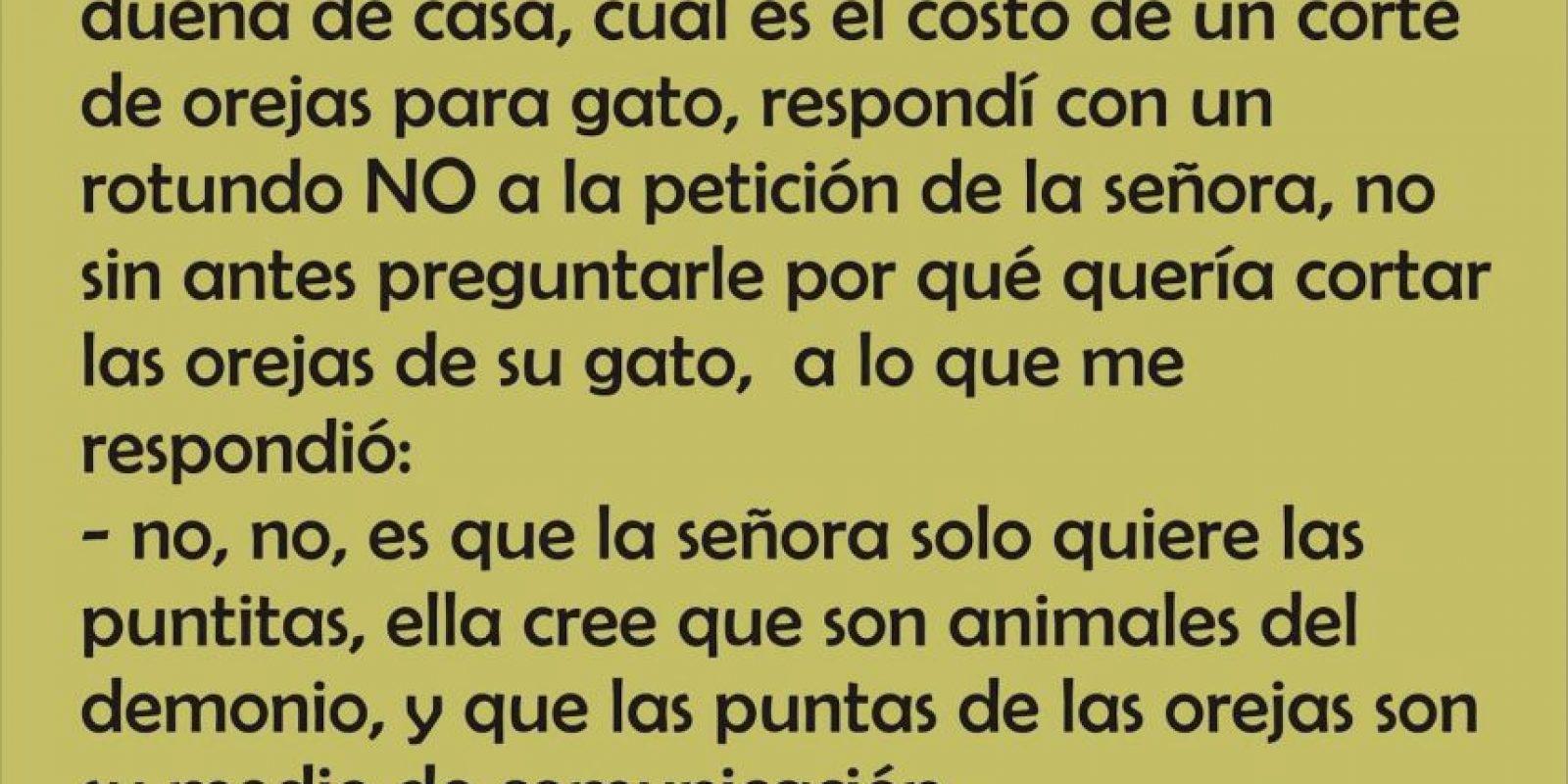 Hay dueños que no tienen remedio. Estos son testimonios de algunos veterinarios. Foto:Los Veterinarios Andan Diciendo