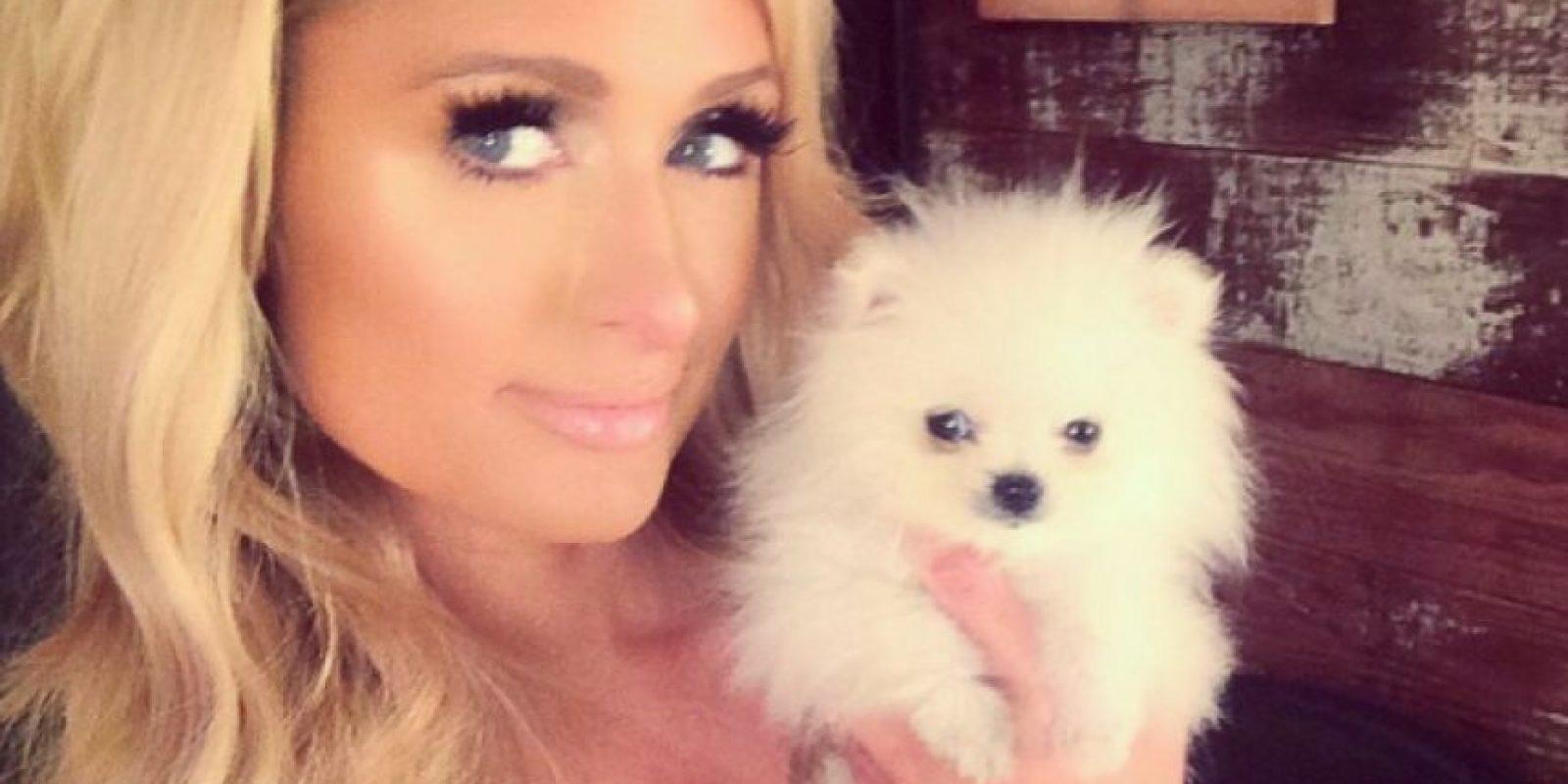 """Paris Hilton y """"Prince"""" el pomeriana de 13 millones de dólares que llegó por correo. Foto:Instagram"""
