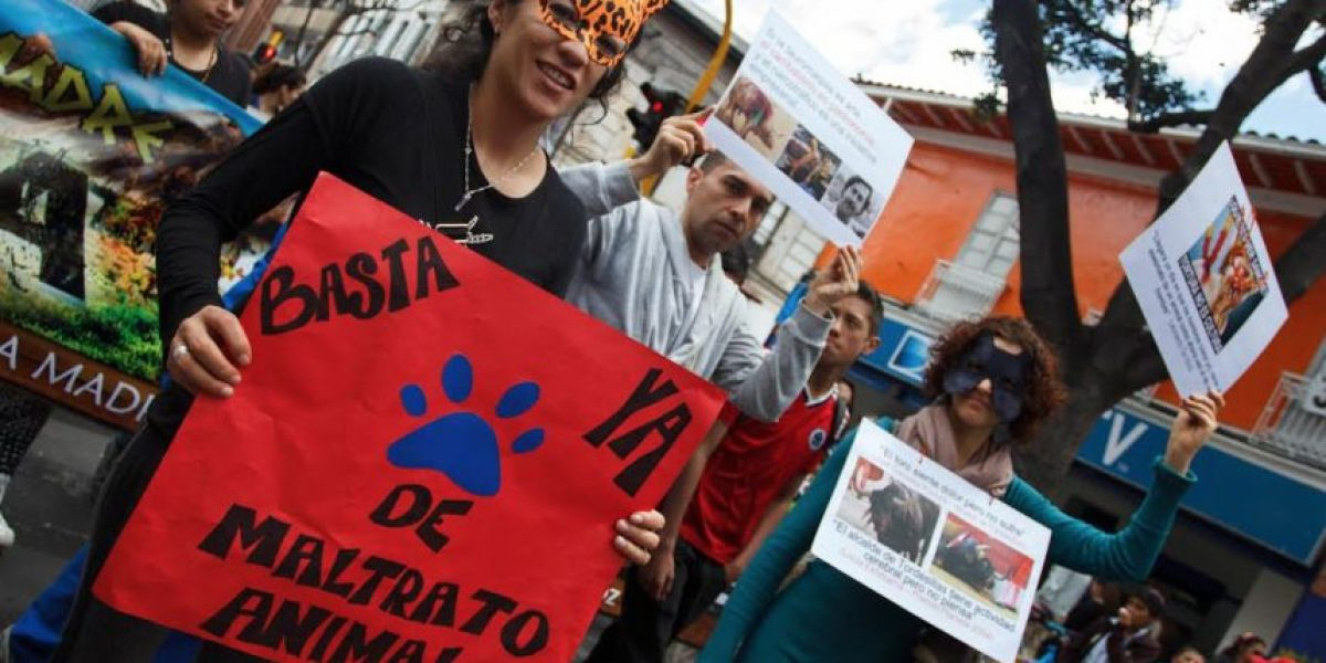 FOTOS: Así fue la marcha contra el maltrato animal en Bogotá