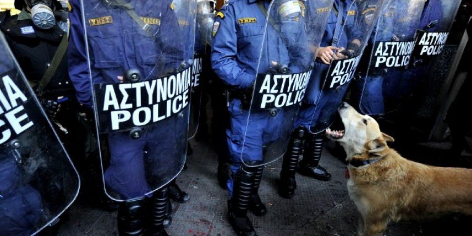 Loukanikos le ladraba a los policías antimotines. Foto:AFP