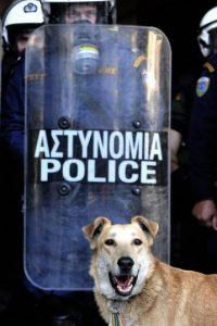 """Loukanikos se """"unió"""" a las protestas en 2008. Foto:AFP"""