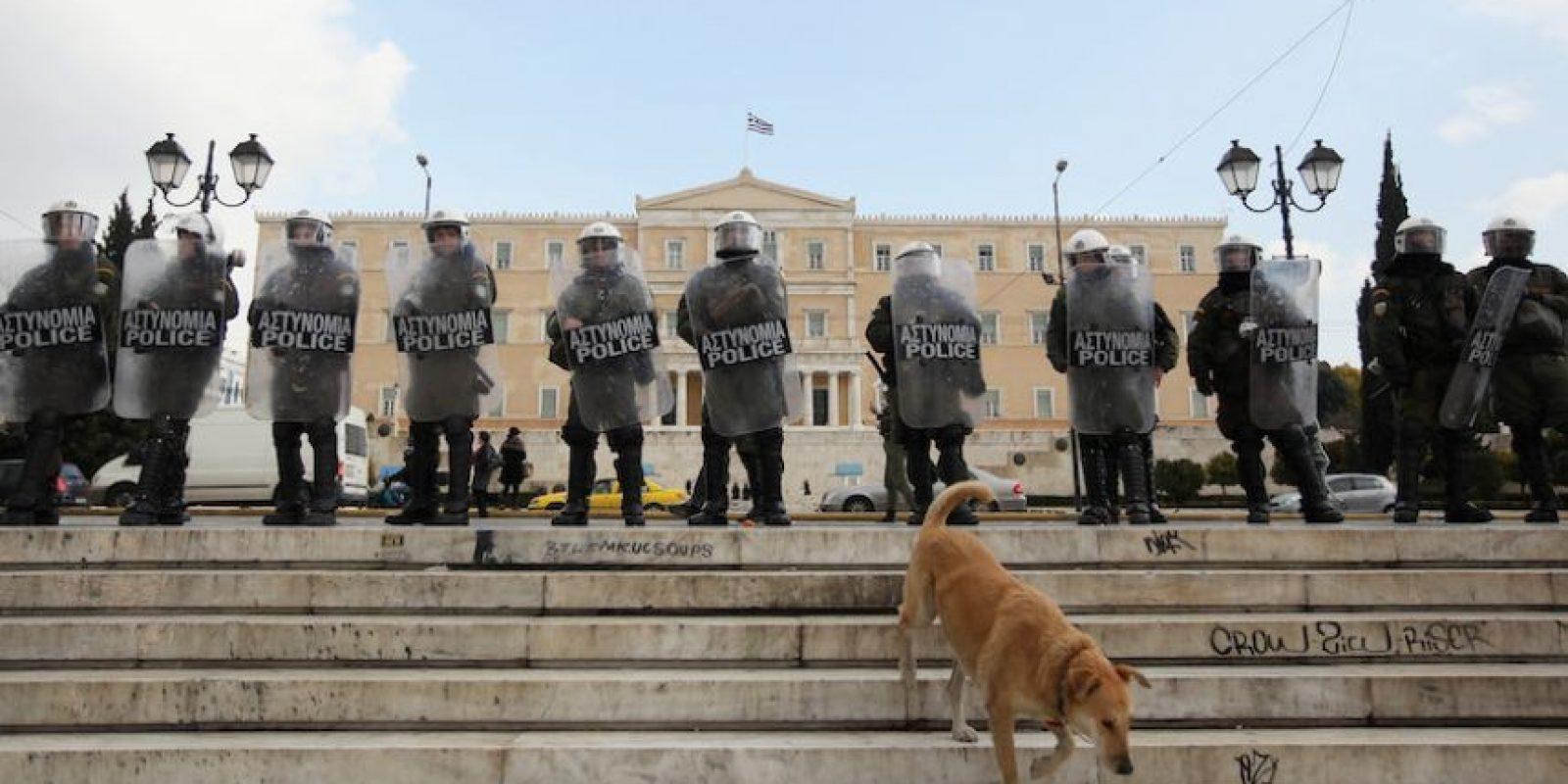 Así se le veía al canino emblema de las protestas en Grecia. Foto:Getty Images