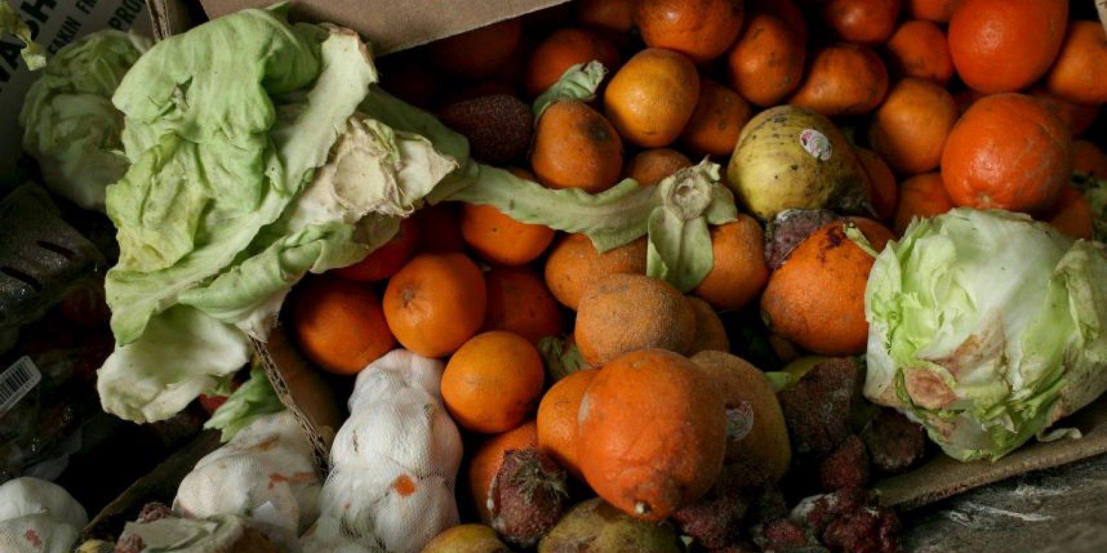 Se estima que la comida desperdiciada por los noruegos es de 620 kilogramos por persona cada año. Foto:Getty Images