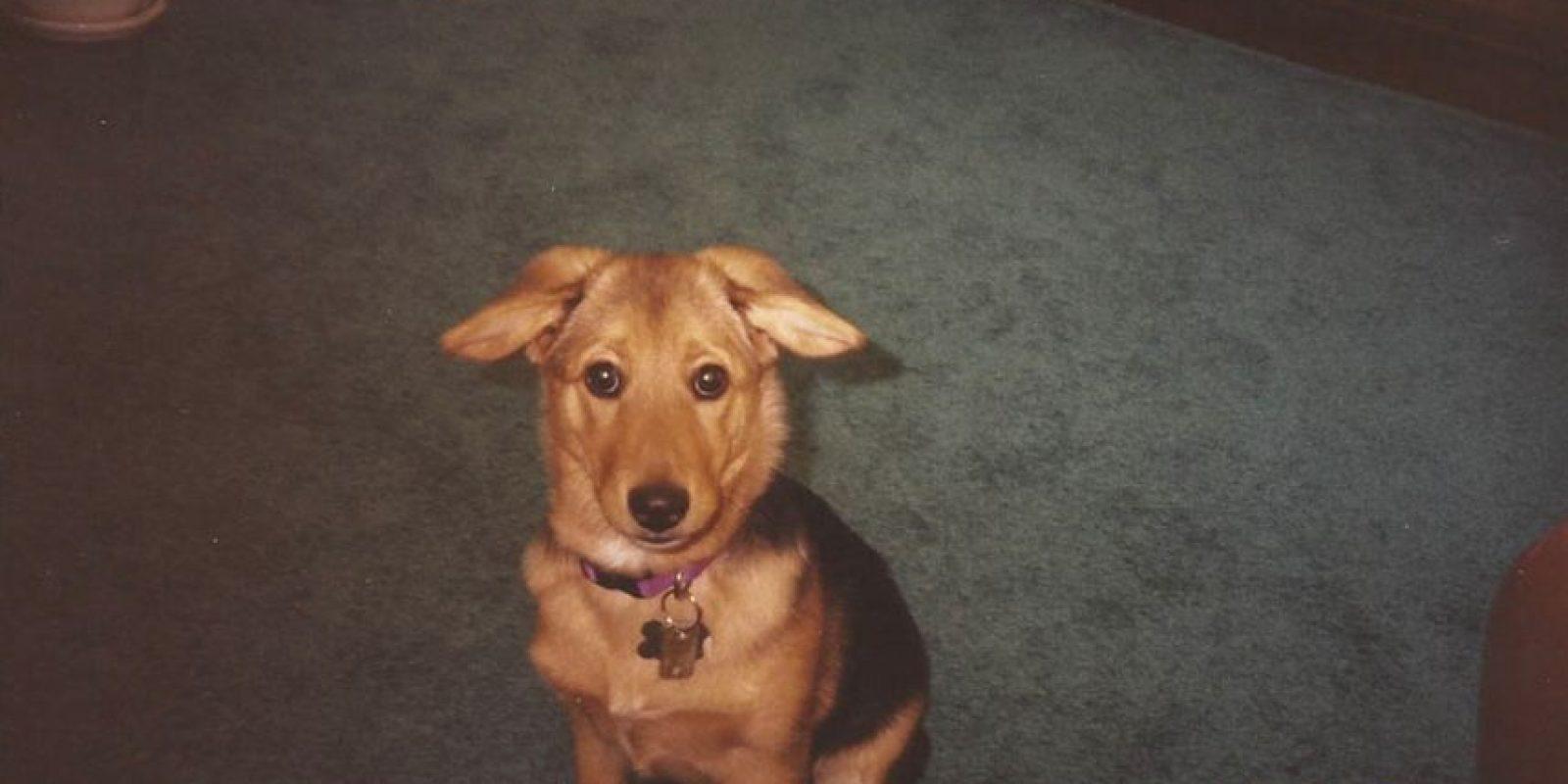 Según indicó, la perra fue rescatada de una perrera. Foto:Vía www.mariacsharp.com/blog