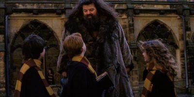 En la ficción, Harry escribió anotaciones sobre los sucesos ocurridos en el mundial de Quidditch. Foto:Facebook/Harry Potter