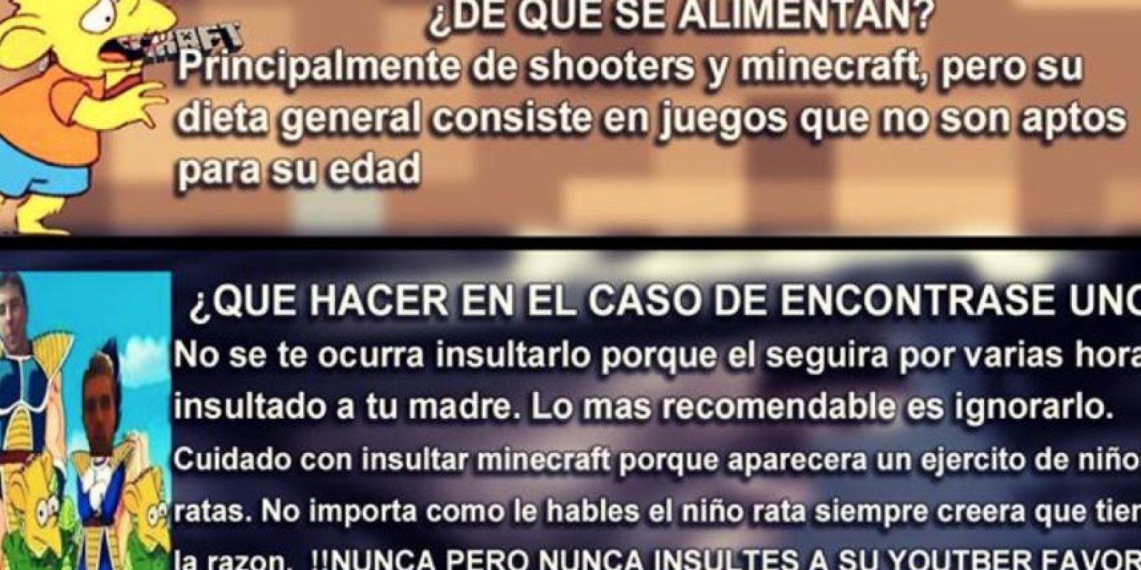 Sus juegos favoritos son Minecraft y critican otras consolas Foto:Taringa